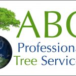 Abc Professional Tree Service