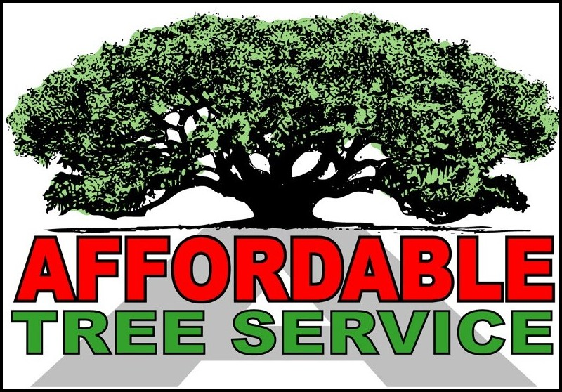 Affordable Tree Service Houston