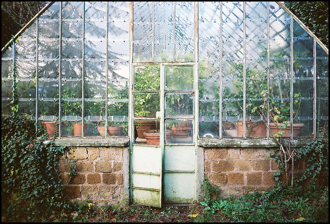 Antique Greenhouse For Sale