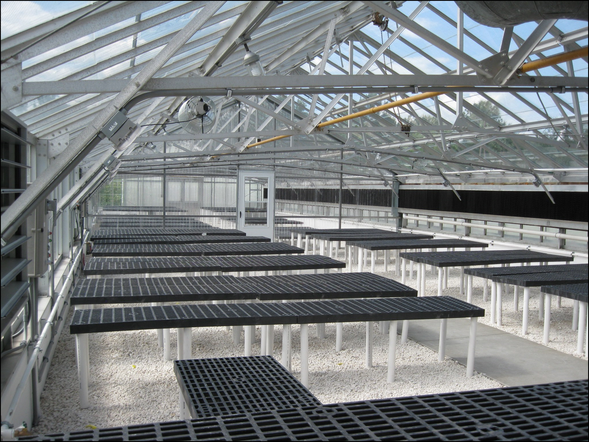 Cost Of A Greenhouse