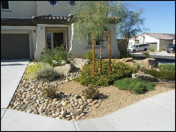 Do It Yourself Desert Landscaping The Garden