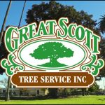 Great Scott Tree Service