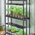 Indoor Greenhouse With Light