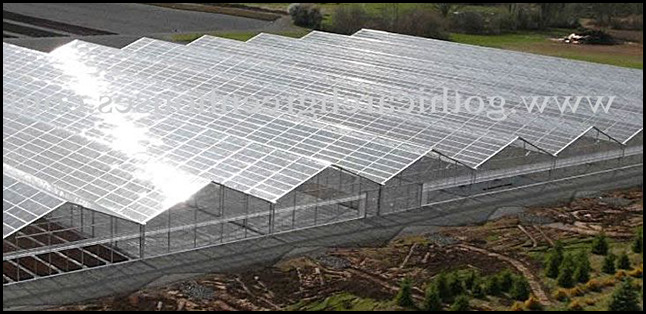 Large Greenhouses For Sale