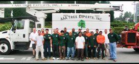 Triple A Tree Service