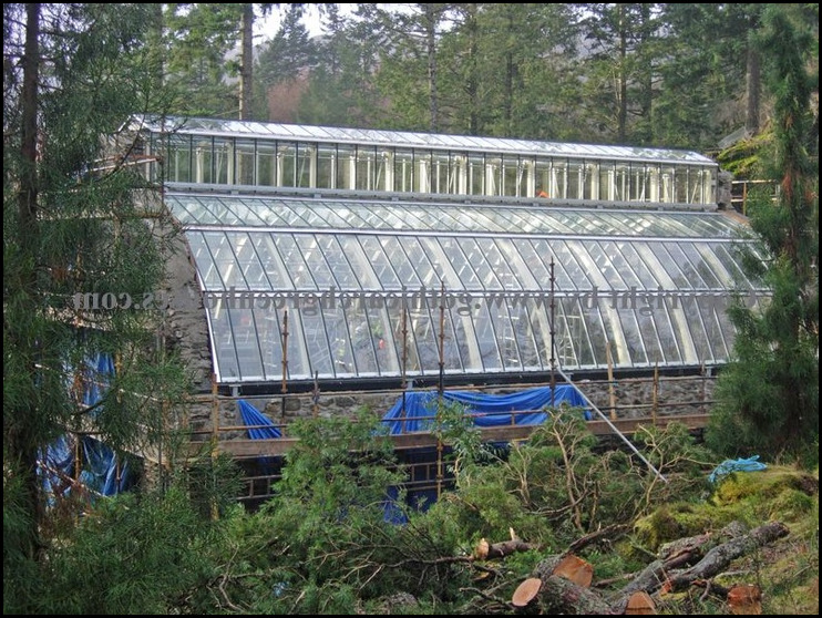 Used Commercial Greenhouse For Sale
