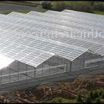 Used Commercial Greenhouses For Sale