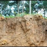 What Is Soil Erosion