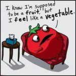 Are Tomatoes Fruits Or Vegetables