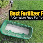 Best Fertilizer For Lawn