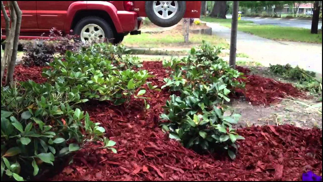 Best Mulch For Flower Beds