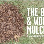 Best Mulch For Garden