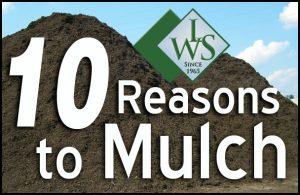 Cost Of Mulch Per Yard