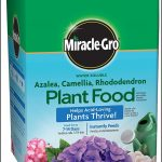 Fertilizer For Acid Loving Plants