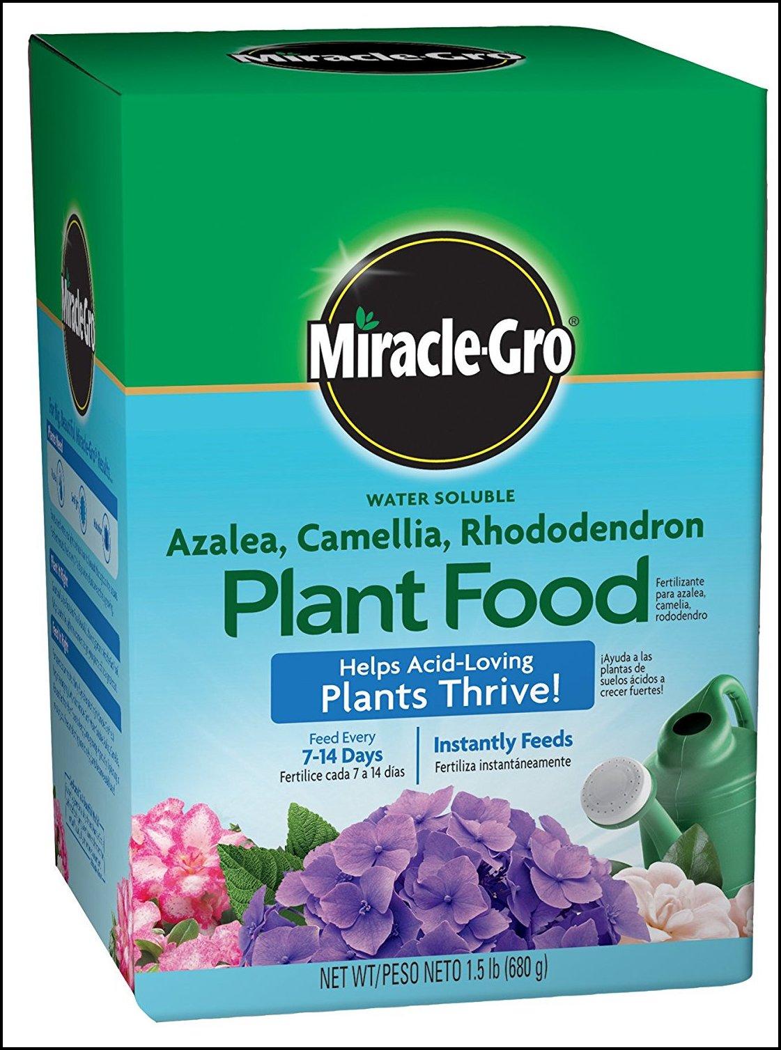 Fertilizer For Acid Loving Plants