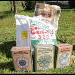 Fertilizer For Apple Trees