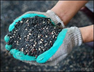 Fertilizers Provide Plants With