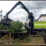 Green Leaf Tree Service