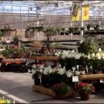 Heartland Nursery And Garden Center