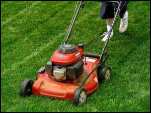 How Much Is A Lawn Mower