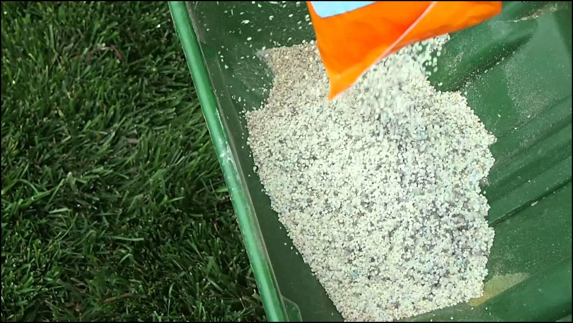How Often Fertilize Lawn