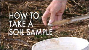 How To Take Soil Samples