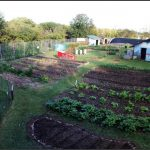 Knoxville Farm And Garden