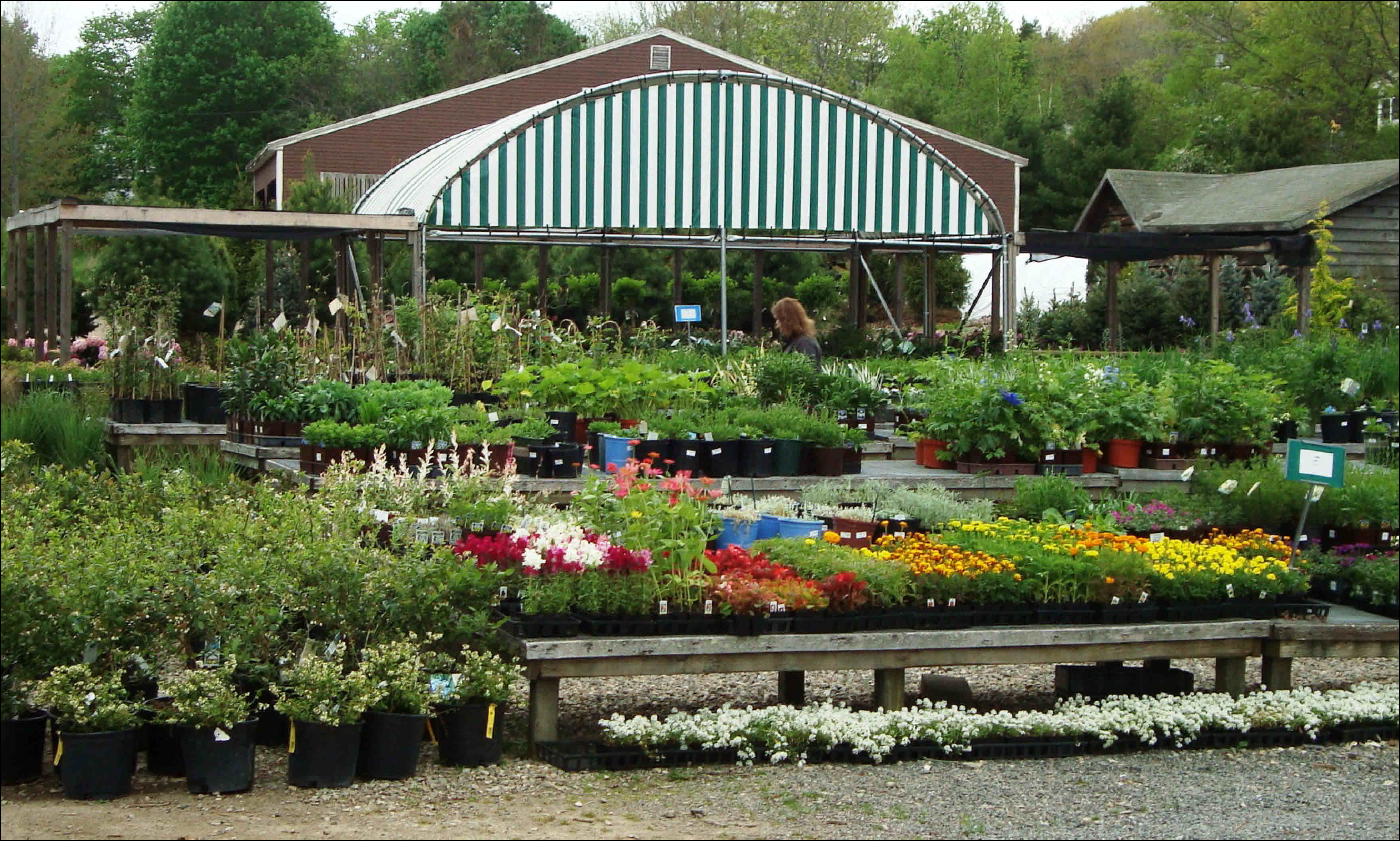Landscape Nursery Near Me