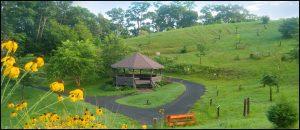 Landscaping La Crosse Wi