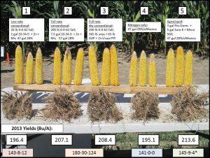 Liquid Fertilizer For Corn