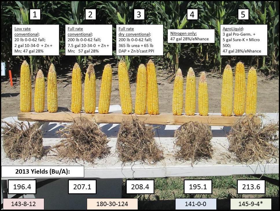 corn fertilizer needs