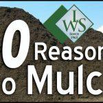 Mulch Cost Per Yard