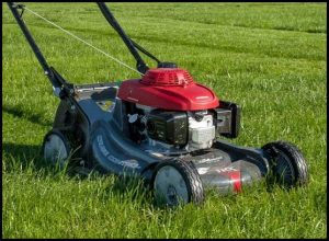 Pictures Of Lawn Mowers