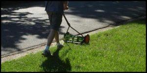 Reel Lawn Mower Reviews