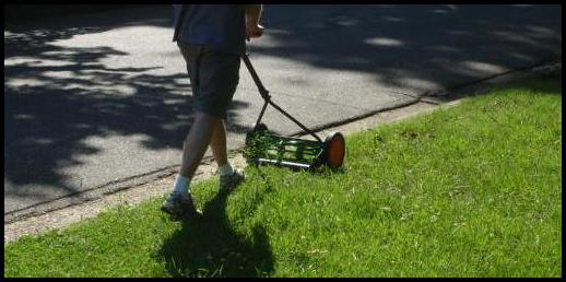 Reel Lawn Mower Reviews