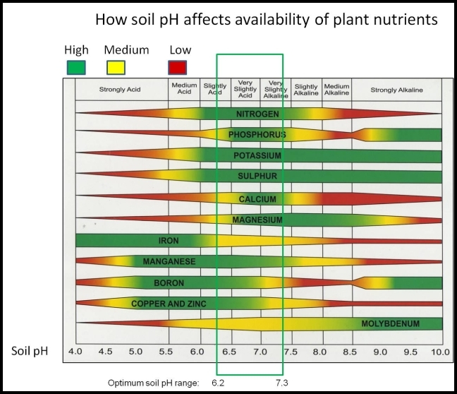 Soil Ph For Tomatoes
