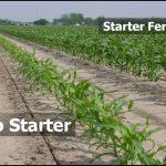 Starter Fertilizer For Corn