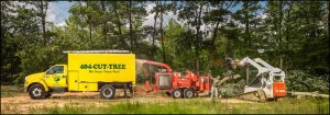 Tree Services Near Me