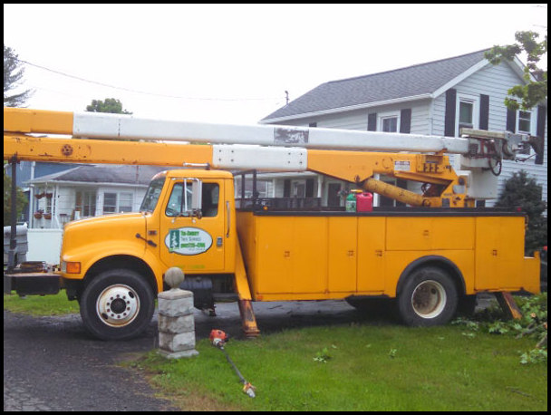 Tri County Tree Service