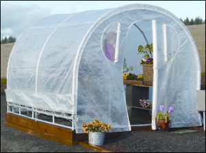 Weatherguard Greenhouse