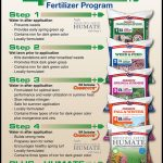 What Fertilizer To Use In Spring