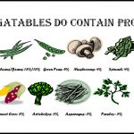 What Vegetables Have Protein