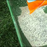 When Should I Fertilize My Lawn