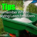 When To Apply Fertilizer