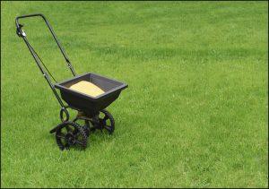 When To Apply Lawn Fertilizer