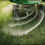 When To Fertilize Grass