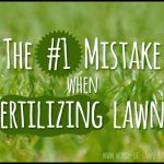 When To Fertilize Grass In Spring