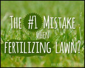 When To Fertilize Grass In Spring