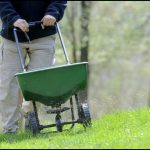 When To Fertilize In The Spring