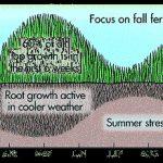 When To Fertilize Lawn In Fall